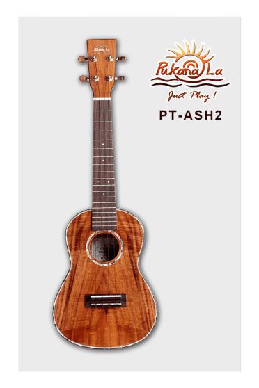 PT-ASH2-01