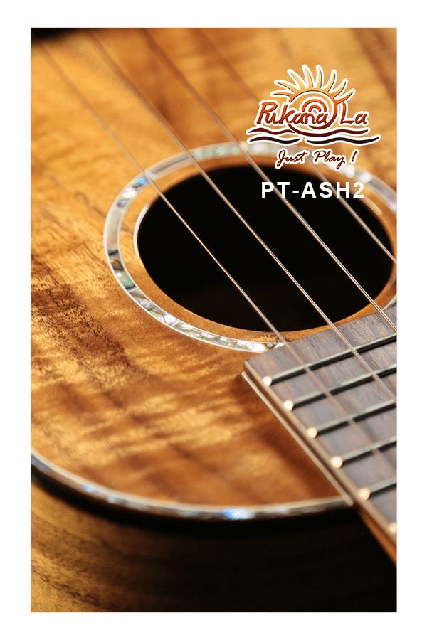 PT-ASH2-07