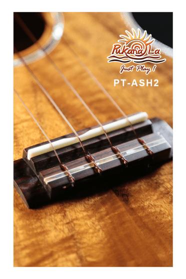 PT-ASH2-08