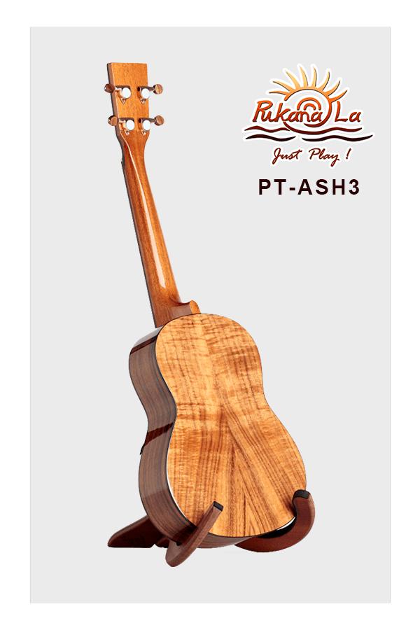 PT-ASH3-04