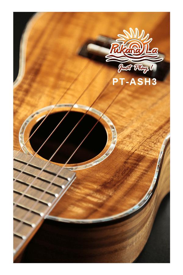 PT-ASH3-10