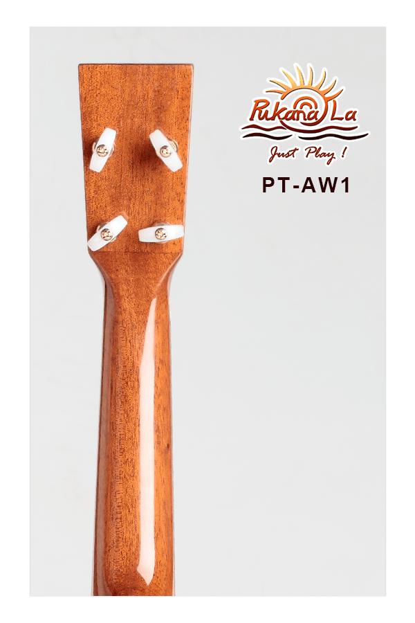 PT-AW1-06