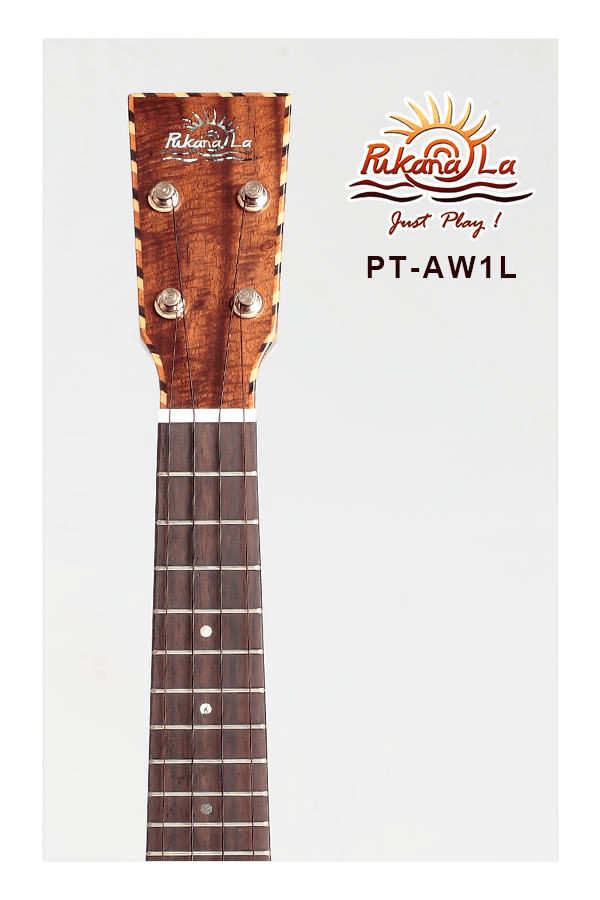 PT-AW1L-05