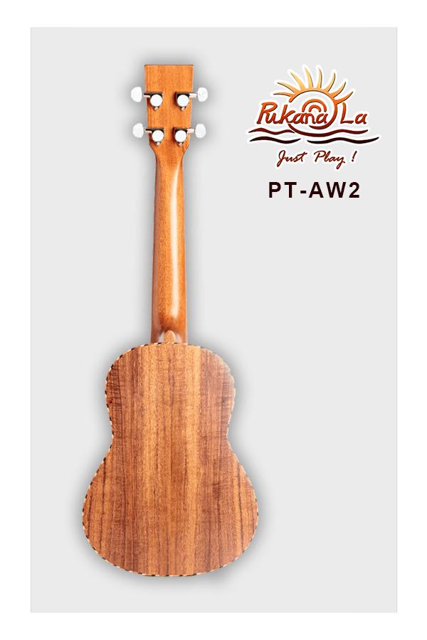 PT-AW2-02