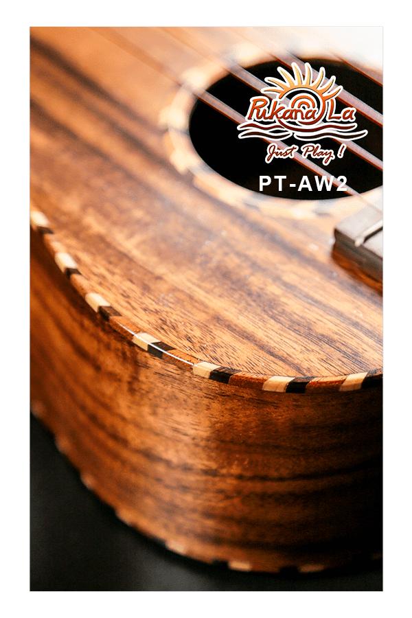 PT-AW2-08