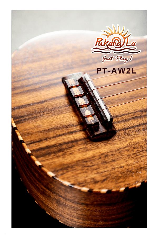 PT-AW2L-10