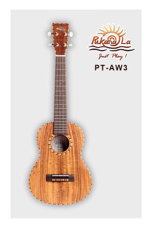 PT-AW3-01