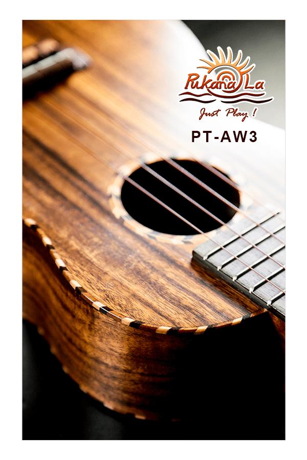PT-AW3-08