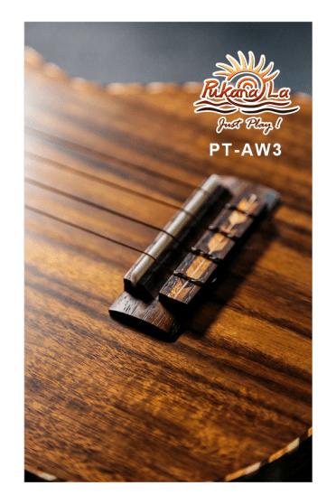 PT-AW3-09