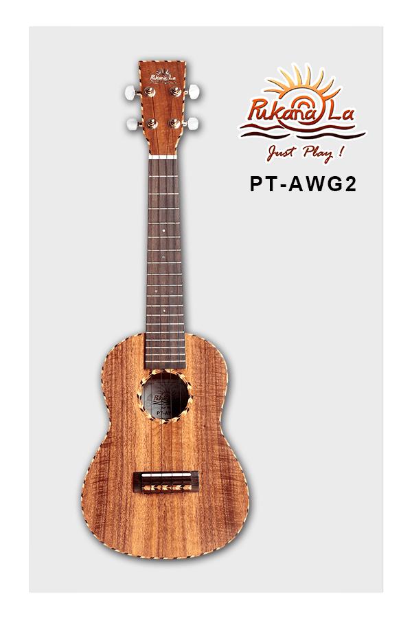 PT-AWG2-01