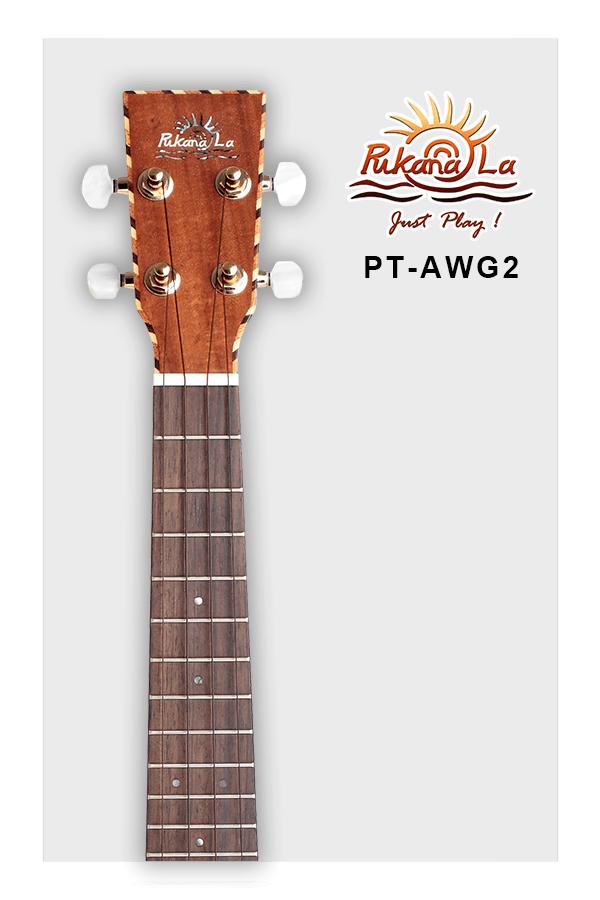 PT-AWG2-05