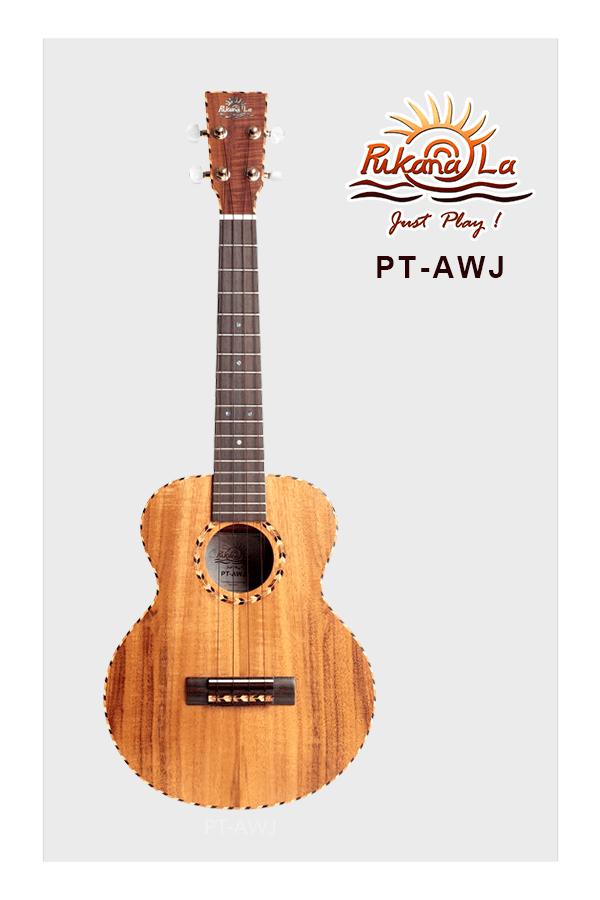 PT-AWJ-01