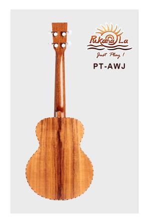PT-AWJ-02