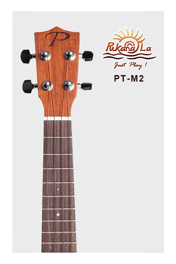 PT-M2-05