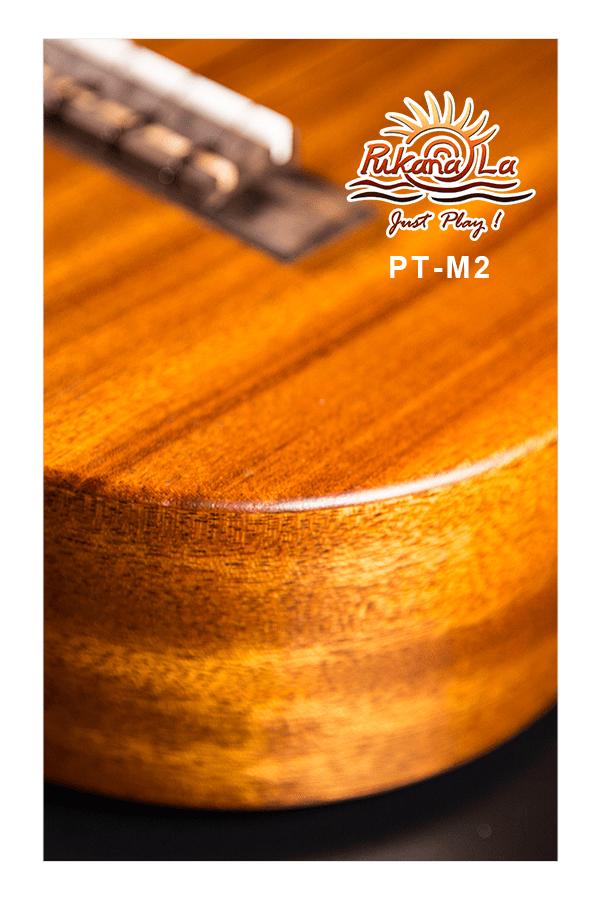 PT-M2-08