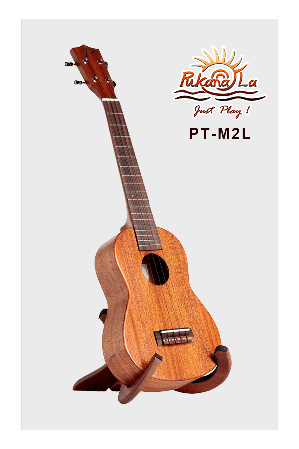 PT-M2L-03