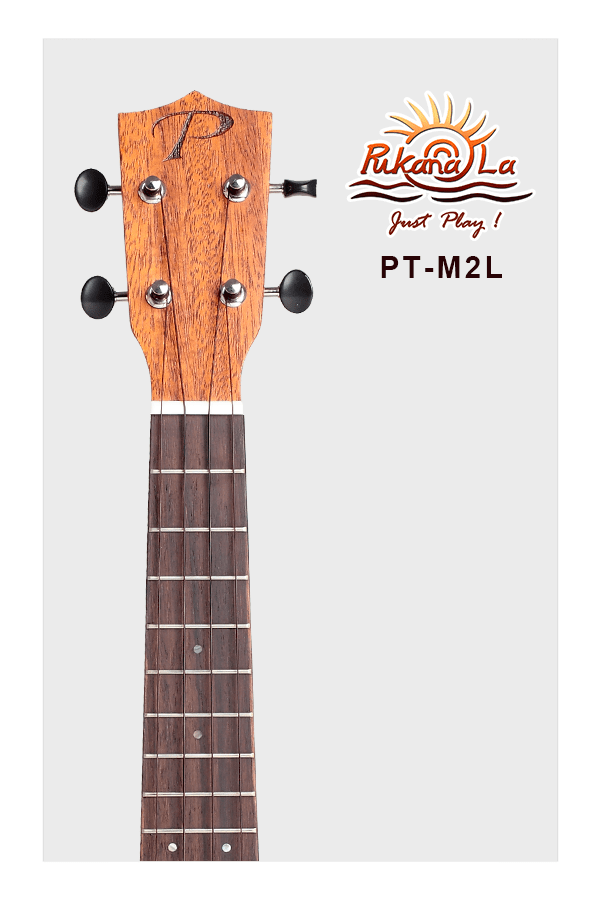PT-M2L-05