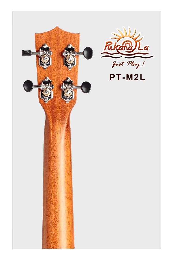 PT-M2L-06