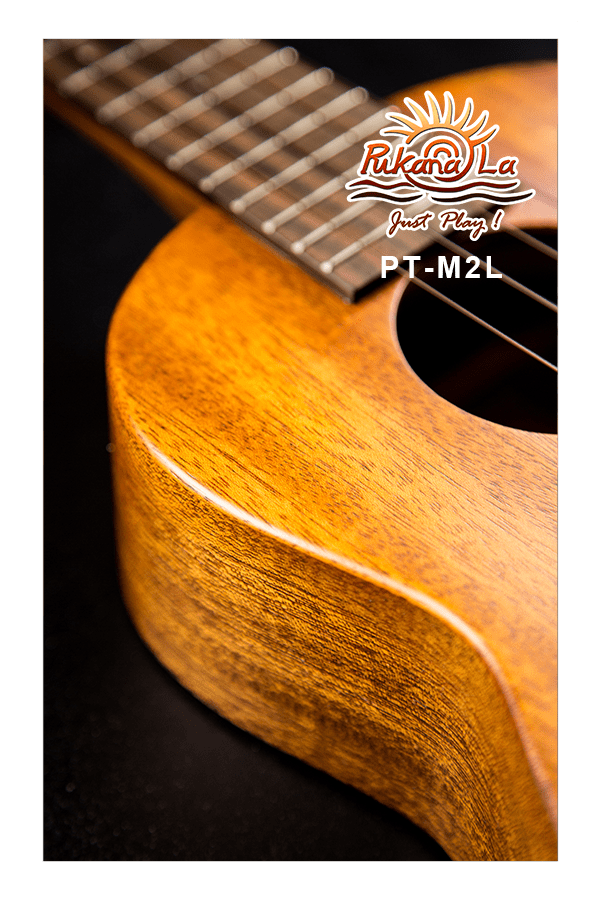PT-M2L-07
