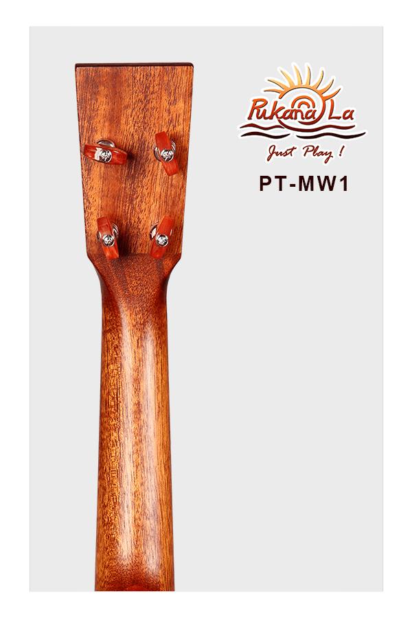 PT-MW1-06