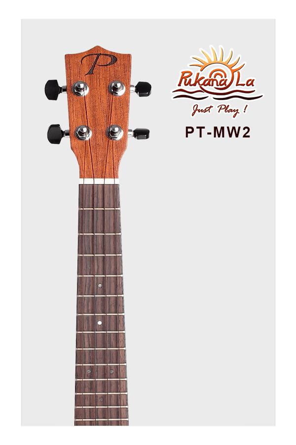PT-MW2-05