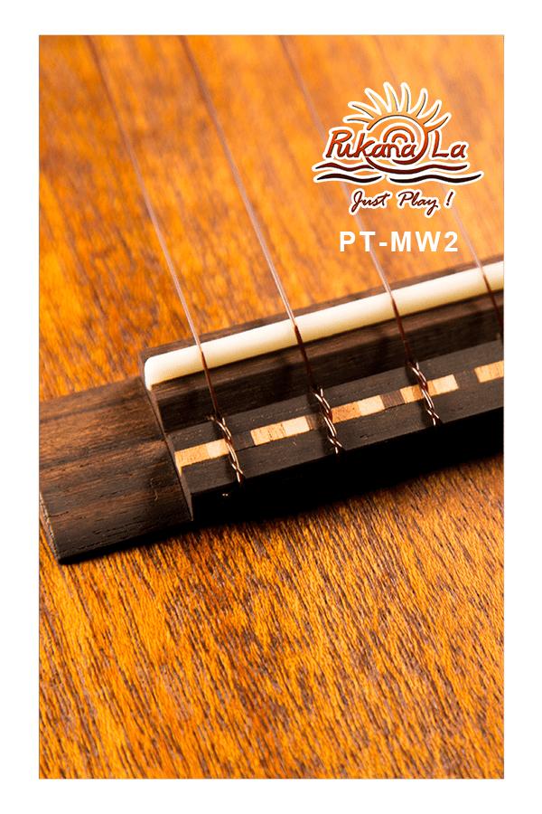 PT-MW2-09