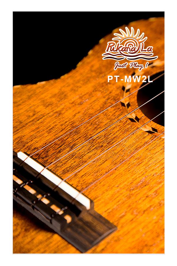PT-MW2L-10