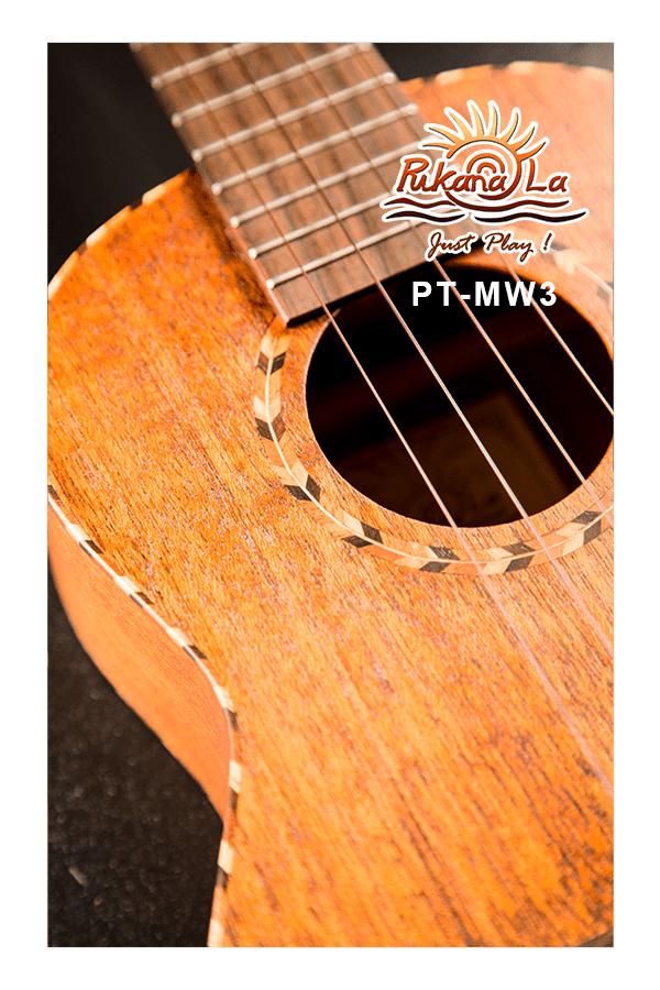 PT-MW3-07