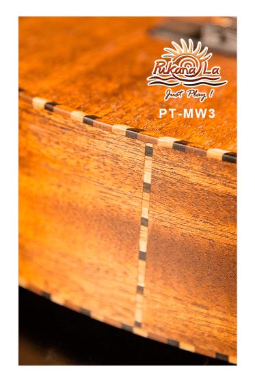 PT-MW3-10