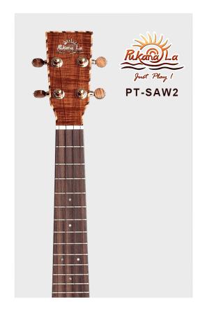 PT-SAW2-05