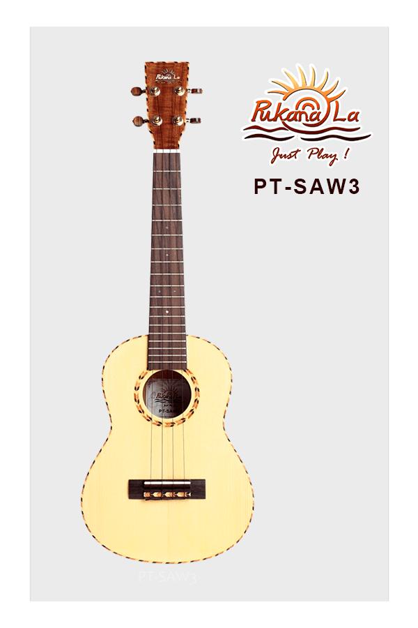PT-SAW3-01