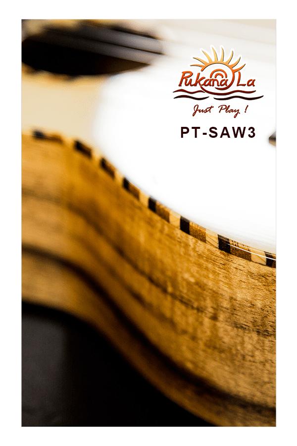 PT-SAW3-08