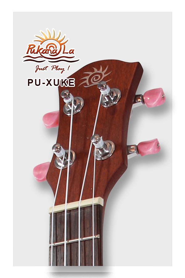 PU-XUKE-10