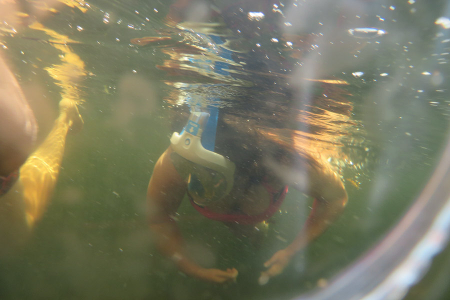 Snorkelen Key Largo - Sabine