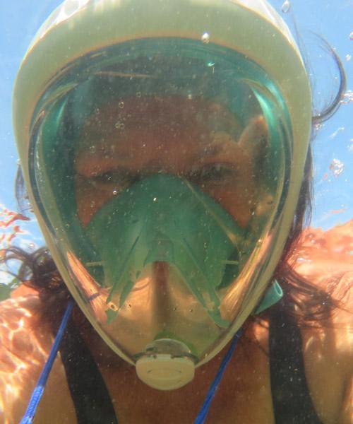 Snorkelen Key Largo - Dinie