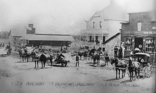 """""""Binder Day"""" in Pulaski 1898"""