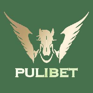 Pulibet Bahis Sitesi