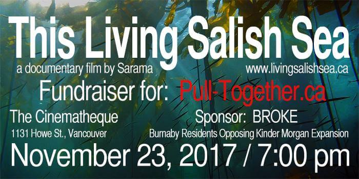 Vancouver film fundraiser for Pull-Together.ca