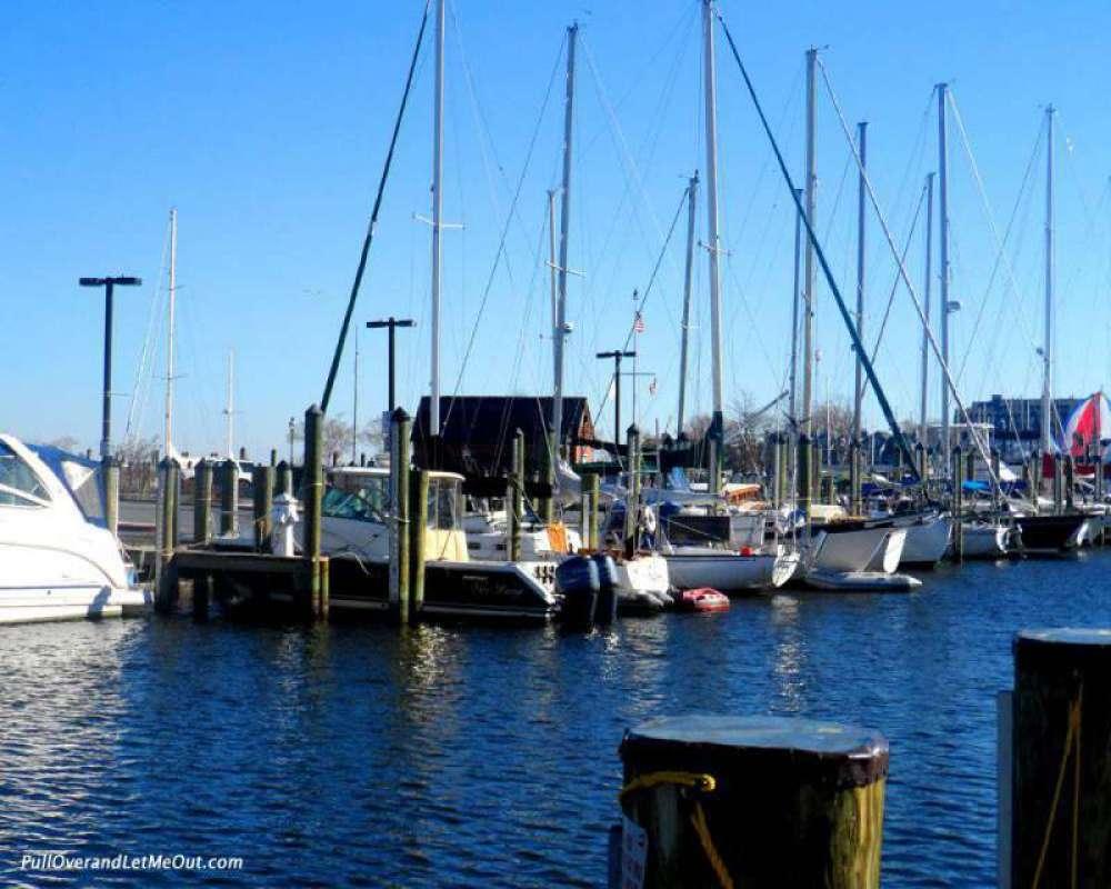 "Annapolis has earned the name ""America's Sailing Capital."""