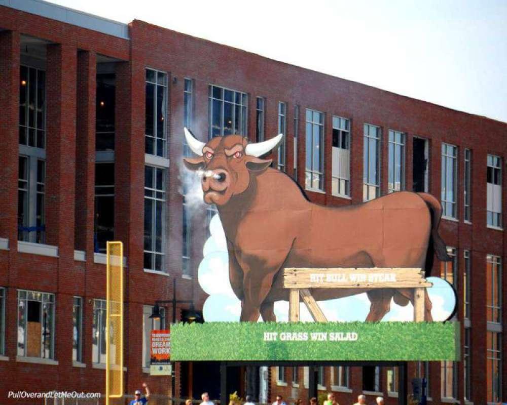 Home-run-Bulls!