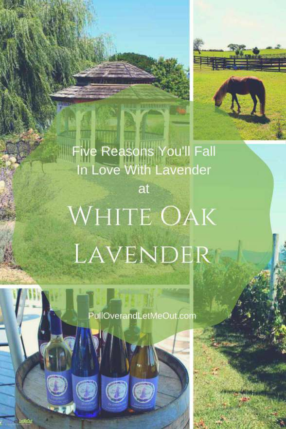 Five Reasons You'll Fall In Love With Lavender White Oak Lavender PullOverandLetMeOut