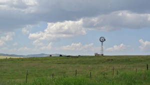 Grasslands in Sonoita AVA