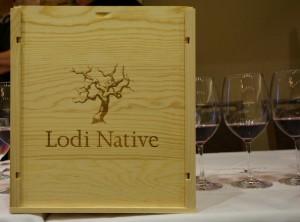 Lodi Native Six Pack