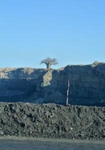 Lone baobab tree stands over an open-pit coal mine near Hwange, Zimbabwe