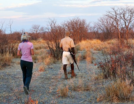 Walking to rhino