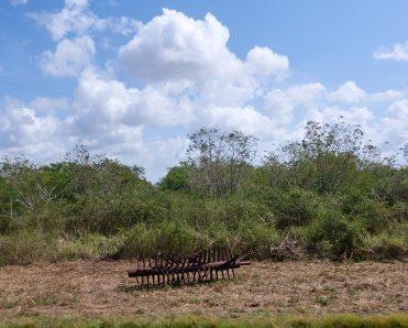 Rusting sugarcane machine parts