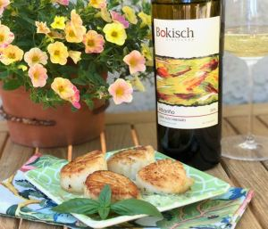 Bokisch Vineyards Albariño Terra Alta Vineyard