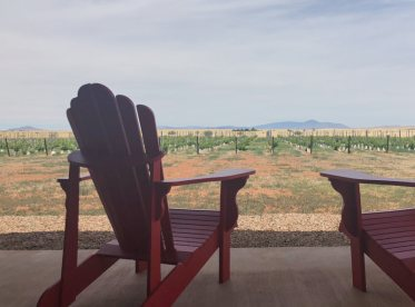Deep Sky Vineyard view
