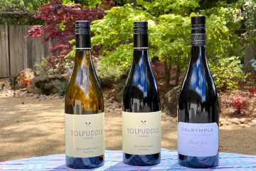 Tasmanian Chardonnay and Pinot Noir featured photo