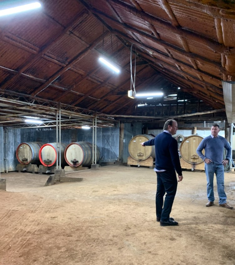Talking barrel size in Tyrrell's historic winery photo